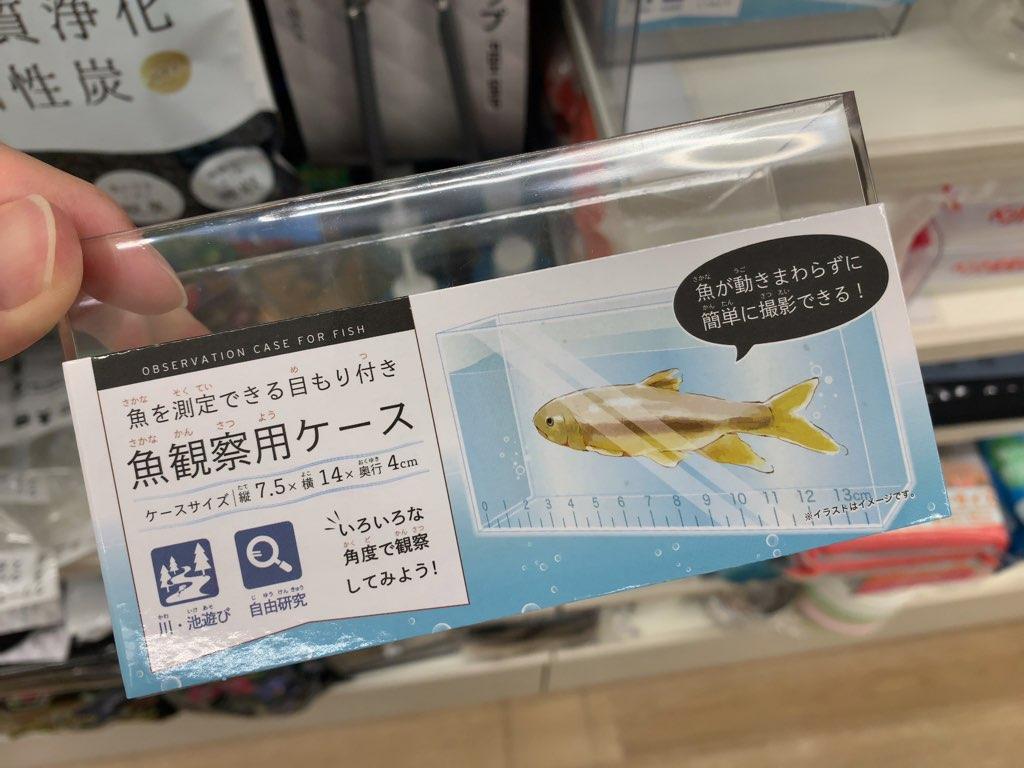 魚観察用ケース セリア